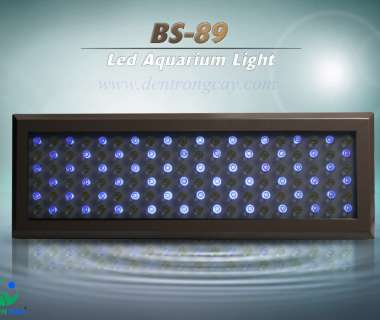 BS-89